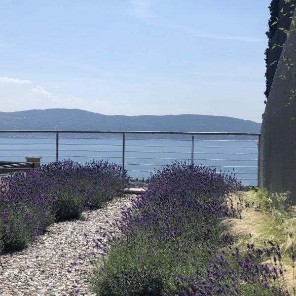 CáCedro_Lake Garda_garden_1_1_web